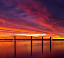 Redland Bay Glory - Qld Australia by Beth  Wode