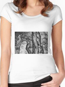 Point Lobos II BW Women's Fitted Scoop T-Shirt