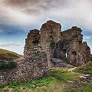 Castle In Ruins by Vicki Field