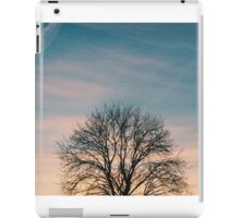 Last Flickers of Sunlight iPad Case/Skin