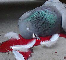 Stool Pigeon  by Ryszard  Wozniak