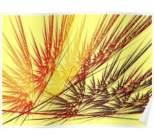 Red Wheat Poster