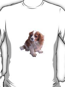 Cute King Charles Spaniel T-Shirt