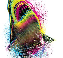 Cmyk Shark by moncheng