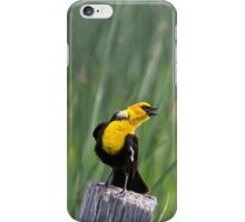 Angling for Dinner iPhone Case/Skin