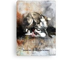 Hunting foxes Canvas Print