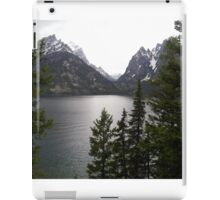 lake beauty iPad Case/Skin