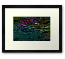 Evening Pond Rhapsody Framed Print