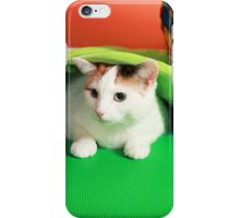 Hide and seek playing cat iPhone Case/Skin