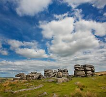 Dartmoor Tor by Dave Hare