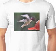 MALE ANNA'S AT FEEDER Unisex T-Shirt