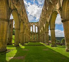 Rievaulx Abbey by Dave Hare
