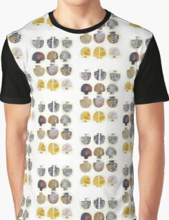 Multifaceted No.4, Stones and Roses (Light, Time & Facade Series) Graphic T-Shirt