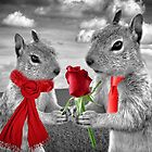 Squirrels in Love by Doreen Erhardt