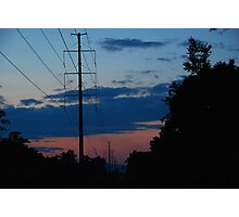 Wires through the forest Photographic Print