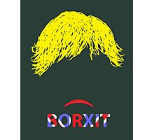 Borxit or possibly Borxat Photographic Print