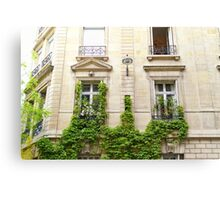 Ivy covered wall - Paris Canvas Print