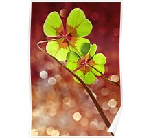 Lucky Sparkle Poster