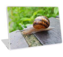 Snail Laptop Skin
