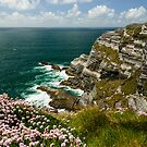 Cliffs of Kerry Ireland by woodnimages