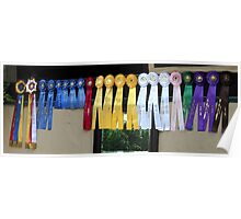 Winning Ways Horse Show Ribbons Poster