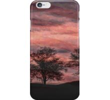 Troubled Nation iPhone Case/Skin