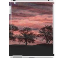 Troubled Nation iPad Case/Skin