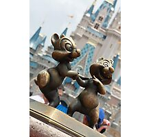 Chip 'n' Dale Photographic Print