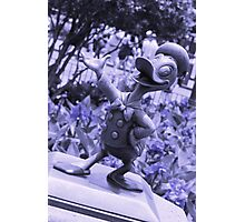 Donald (Blue) Photographic Print