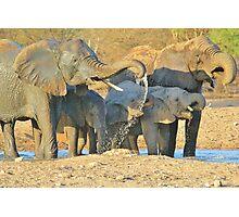 Elephant - Joy of Water - African Wildlife Background  Photographic Print