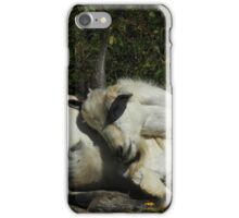 Sleeping Goat iPhone Case/Skin