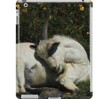 Sleeping Goat iPad Case/Skin