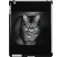 The Cat Who Ate My Sister Sally iPad Case/Skin