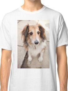 Big Puppy Eyes Classic T-Shirt