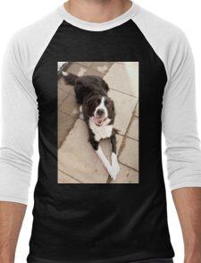 Dog relaxing on Sunny Day Men's Baseball ¾ T-Shirt