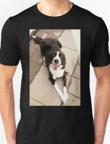 Dog relaxing on Sunny Day Unisex T-Shirt