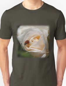 beautiful white rose flower with orange and black spots ladybug.  floral nature photography.  T-Shirt