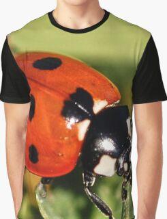 Lady Bug Graphic T-Shirt