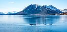 Frozen Lake by Svetlana Sewell