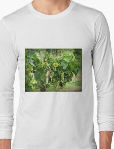 Fruit on the Vine Long Sleeve T-Shirt