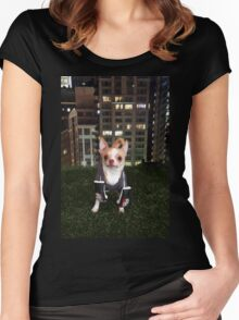 Boxing Dog Women's Fitted Scoop T-Shirt