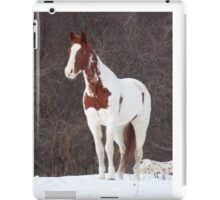 1Apache in the Snow iPad Case/Skin