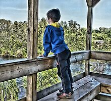 The Lookout by Ed Warick