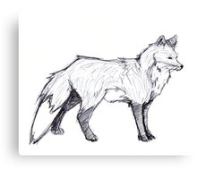 Red fox draw Canvas Print