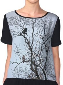 Avian Quarrel in Early Spring Chiffon Top