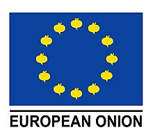 European Onion Photographic Print