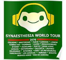 Synaesthesia World Tour Poster