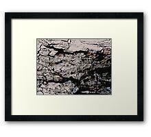 Rocky Mountain Wall Pattern Framed Print