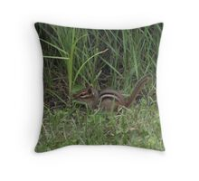 Adorable Chipmunk Throw Pillow