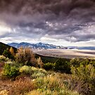 Great Basin by Kathy Weaver